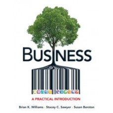 BUSINESS A PRACTICAL INTRODUCTION
